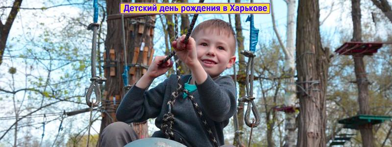 День рождения в веревочном парке